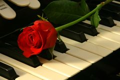 Love of music. Red rose on top of organ Stock Images