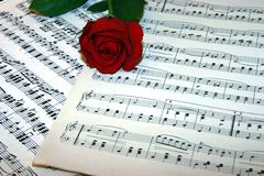 Love of music. Red rose on top of music notes stock image