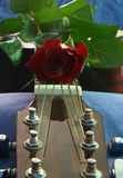 Love of music 5. Rose on top of guitar with leaf royalty free stock photos