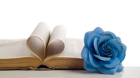 Love My Bible. Concept of a loveable religion with a bible and it's pages making a heart shape along with a fake flower on the side, shot on white Royalty Free Stock Images