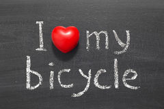 Love my bicycle Royalty Free Stock Images