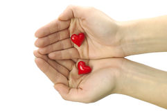 Love is in my hands Royalty Free Stock Images