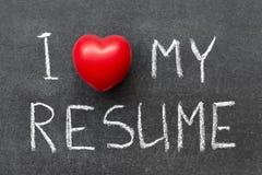 Love My Resume Royalty Free Stock Photo
