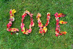 Love, name of leaves Royalty Free Stock Photography