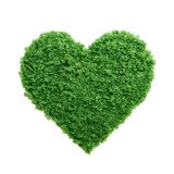 Green grass eco heart isolated. Love nature concept. Grass growing in the shape of a heart. We need to protect the environment and reconnect with nature Royalty Free Stock Photos
