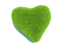 Love of nature. Grass Heart Stock Images