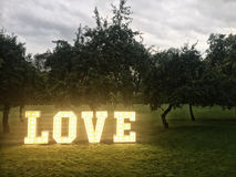 Love neon letters in park Royalty Free Stock Image
