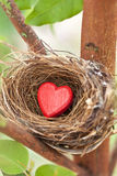 Love Nest Heart Valentine. A birds nest with a red love heart resting in a tree Royalty Free Stock Image