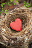 Love Nest Valentine. A close-up of red love heart in a birds nest Royalty Free Stock Photography