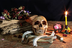 Love never dies for heart and soul, Still Life Royalty Free Stock Images