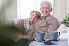 Love in old age Stock Image