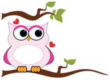 Love Owl Royalty Free Stock Images