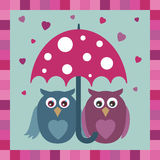 Love owls Royalty Free Stock Images