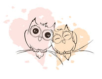 Love owls on a branch Stock Images