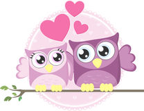 Love owls couple Stock Images