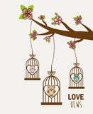 Love owls Stock Photos
