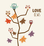 Love owls Royalty Free Stock Photo