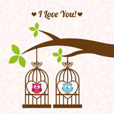 Love owls Royalty Free Stock Image