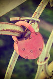 Love padlocks at a bridge Royalty Free Stock Photo
