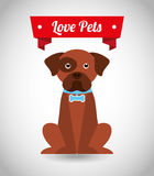 Love pets Stock Photography