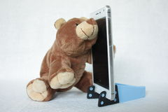 "Love and phone â""–1. Bear speaks on the phone stock images"