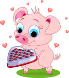 Love_pig. Cute little piglet holding a heart shape valentine box of chocolates Royalty Free Stock Image