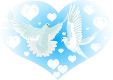 Love and Pigeons Royalty Free Stock Image