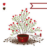 Love plant life dead Stock Photography