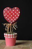 Love plant, valentines day. Growing love plant in red pot Royalty Free Stock Images