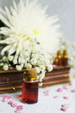 Love potion in a bottle Stock Images
