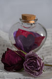 Love potion. A glass heart shaped potion bottle full of paper hearts. A love letter is in the background and two dried roses are present stock photos