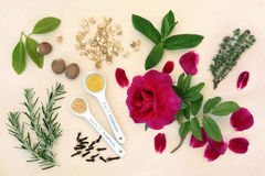 Love Potion Ingredients Stock Photos