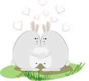 Love rabbits. Couple of  funny rabbits in love Stock Photography