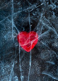 Love red heart frozen in ice. Happy Valentine`s day Royalty Free Stock Photo