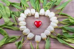 Love red heart of tulips lovely surprise present for girlfriend Stock Photos