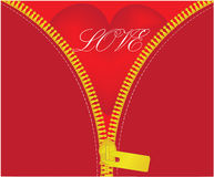 Love red heart under unzipped royalty free stock photos