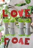 Love. From red letters in pots with greens royalty free stock images
