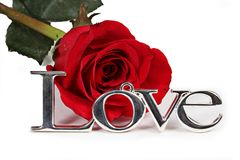 Love and red rose Royalty Free Stock Photos