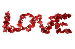 LOVE of Red Roses Stock Images