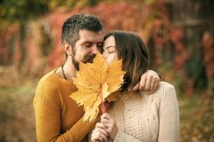 Love and relations. autumn happy couple in love with yellow maple leaves. Love and relations. autumn couple in love of happy men wnd women with yellow maple Stock Images