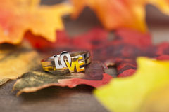 LOVE ring Royalty Free Stock Images