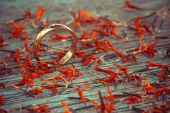 Love ring on wood in autumn season Stock Images