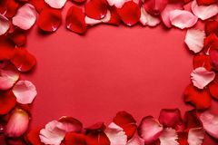 Love romantic background. Frame of rose petals on a red background.  stock photography