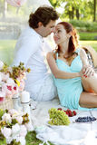 Romantic picnic. Love. Romantic picnic in the park Royalty Free Stock Photo