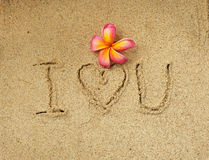 Love in the sand Stock Photography