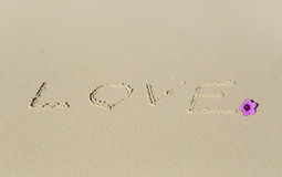 Love in the Sand Stock Images