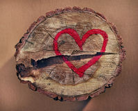 Love and save nature, red heart drawn on a tree trunk Stock Images