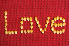 Love Seed Stock Images