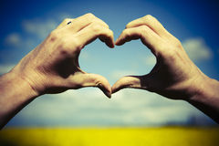 Love shape hands - heart on yellow field and blue sky Royalty Free Stock Photography