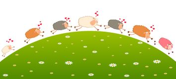 Love sheep pursues after other Royalty Free Stock Images